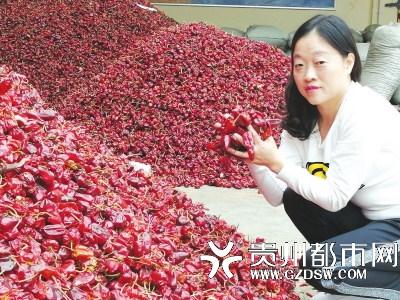 张丽在挑选辣椒
