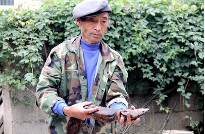 唐轻学告诉我们,发现娃娃鱼时,知道这个是国家的保护动物,就赶紧打电话报警。在等待民警的过程中,有过路的人出价3000元一斤欲购买这条娃娃鱼,被唐轻学一口拒绝了。